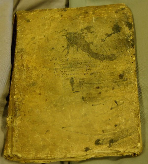 Great hospital online medieval history for Domus book collection